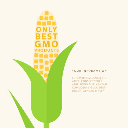 Only best GMO product. Vector poster with corn and place for your text. Genetic engineering. Perfect for website banners and promotional materials.