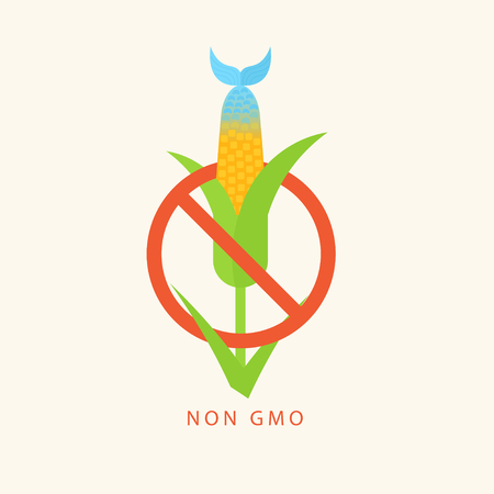 Non GMO. Vector poster with hybrid of corn and fish. Genetic engineering. Perfect for website banners and promotional materials.