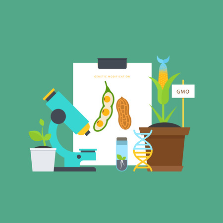 Genetic engineering. Simple botanical concept with vials, seedlings, plants, a microscope, a DNA molecule. Perfect for agricultural or scientific brochures, infographic, other materials. Vectores