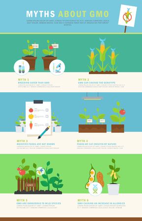 Infographic: myths about GMO. Colorful vector concept with illustrations and simple data. Perfect for agricultural or scientific brochures, other materials. Çizim