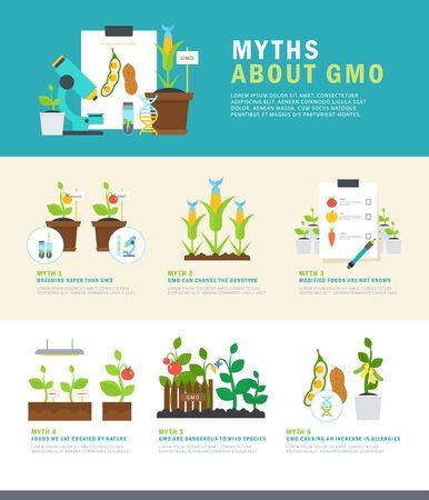 Myths about GMO. Colorful vector infographic with illustrations and simple data. Perfect for agricultural or scientific brochures, other materials.