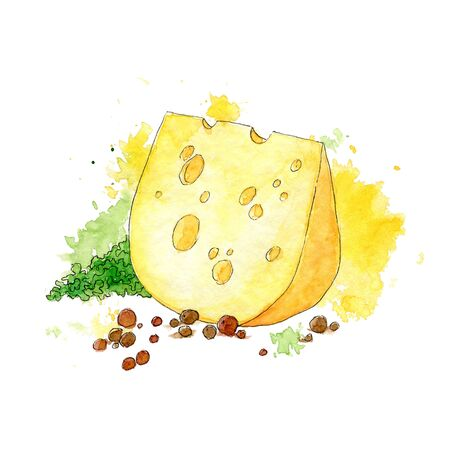 Colorful watercolor illustration of cheese, green leaf and pepper peas. Hand drawn a sketch with splashes and spots. Stockfoto
