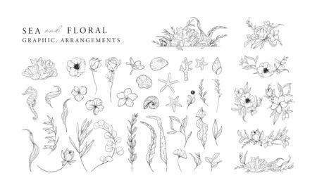 Hand drawn set of marine elements isolated on white. Sea and floral graphic and arrangements. Vector illustrations.