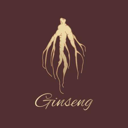 tuberous: Panax ginseng root Illustration