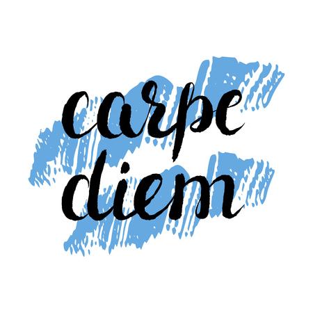 carpe diem: Carpe diem - handdrawn typography design element. Vector lettering.