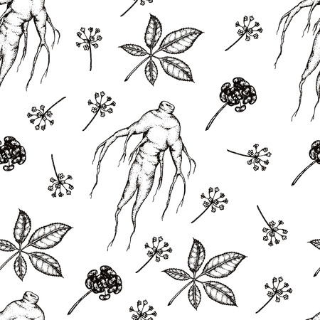 Seamless pattern. Vector hand drawn illustration of Panax Ginseng.Root, leaf, berry, flower.