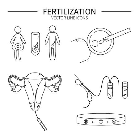 spermatozoid: Fertilization line icons set isolated vector illustration.