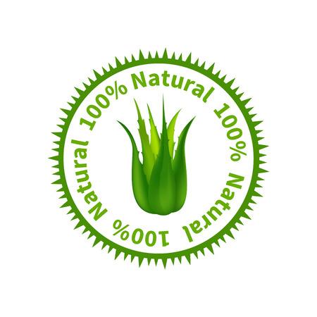 aloe vera: Aloe Vera label.Vector illustration with Medicine Herb. Illustration