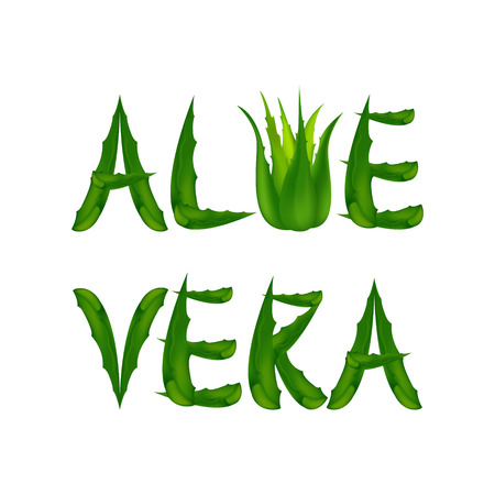 aloe vera plant: Aloe Vera label.Vector illustration with Medicine Herb. Illustration