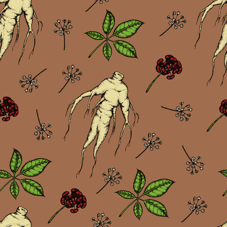oriental medicine: Seamless pattern. Vector hand drawn illustration of Panax Ginseng.Root, leaf, berry, flower.