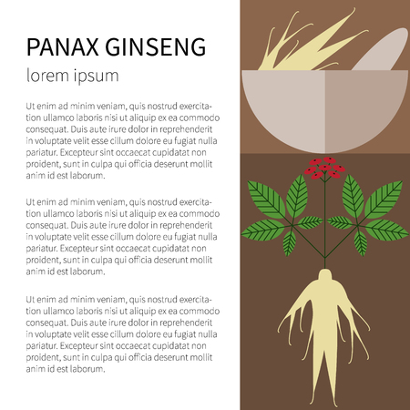 oriental medicine: Panax Ginseng.Flat icons and symbols made in vector. Illustration