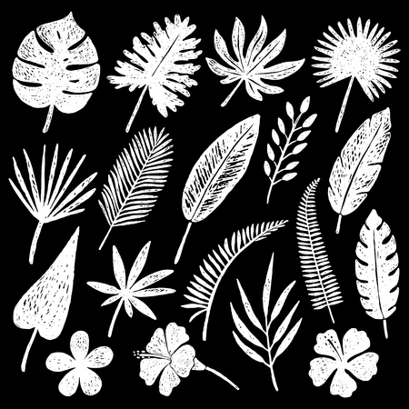 Set of hand drawn tropical leaves and flowers.Vector illustration. Иллюстрация
