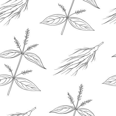 Seamless pattern of Achyranthes bidentata. Vector illustration. Medicinal plant.