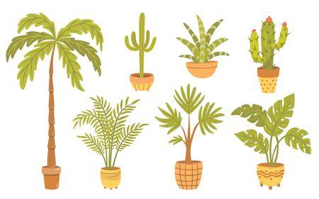 Set of tropical plants in pots. 일러스트
