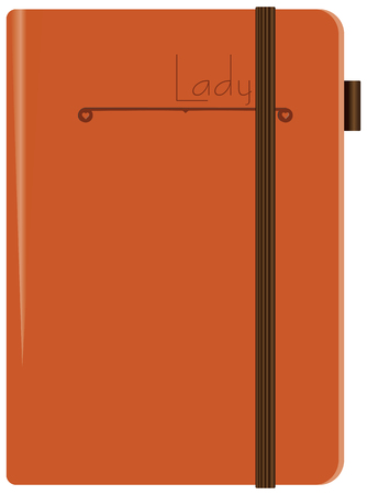 A leather-bound diary for a young Lady