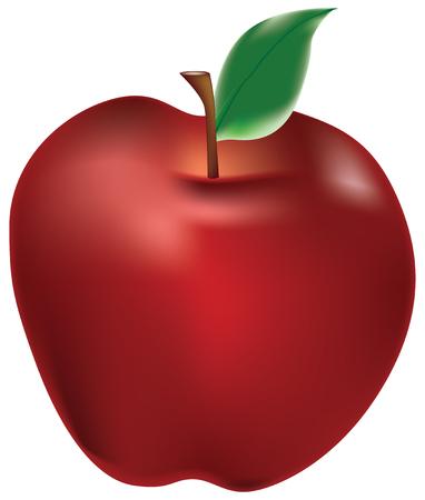 Red apple with a leaf on a stalk Illustration