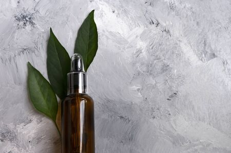 Glass dropper and green leaves.Cosmetic oil natural care, serum, concept organic.Copy space for text. Natural care. Bio.
