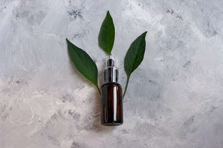 Glass dropper for natural cosmetic oil. Green leaves.Copy space for text. Organic product. Body care. 免版税图像