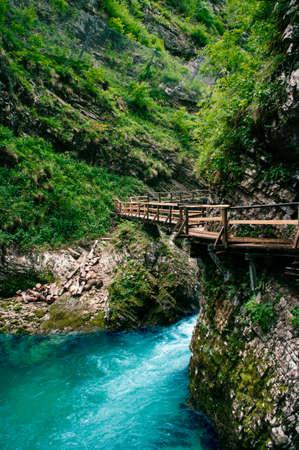 Vintgar gorge, beauty of nature, mountain river Radovna flowing through it, near Bled, Slovenia 免版税图像