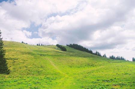 Green valley in hiils, green grass, cloudy sky. national park