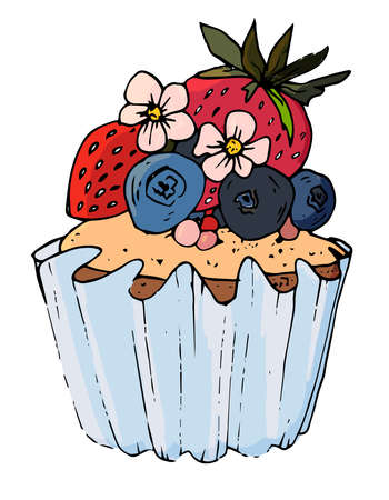 Vector cupcake illustration. hand drawn sweet. Doodle cakes with berries. delicious food.