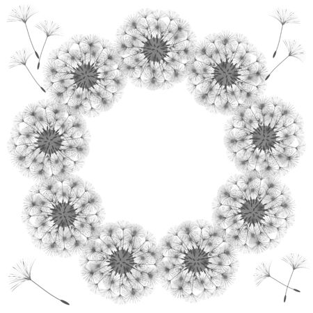 Abstract frame of a dandelion for design.  Vector illustrations.