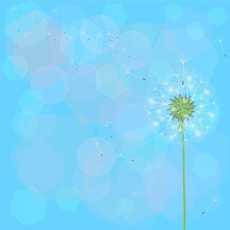 Dandelion flower design
