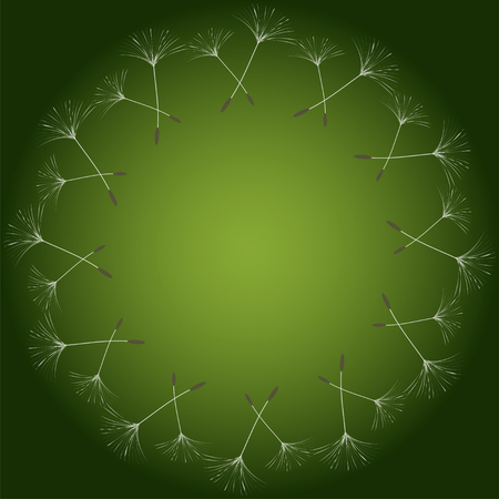 Abstract frame of a dandelion for design. The wind blows the seeds of a dandelion. Template for posters, postcards. Vector illustrations.