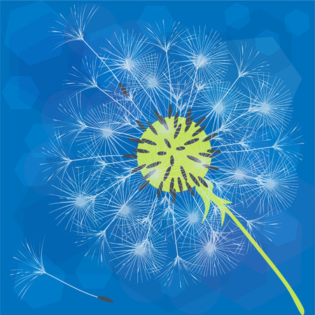 Abstract background of a dandelion for design. Illustration