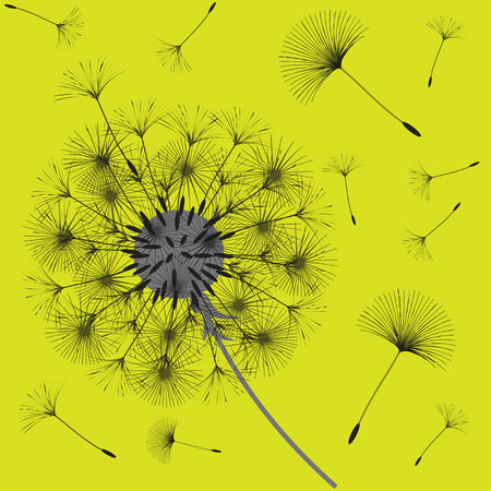 Abstract background of a dandelion for design. The wind blows the seeds of a dandelion. Template for posters, wallpapers, posters. Vector illustrations. Vettoriali