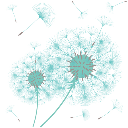 Abstract background of a dandelion for design. The wind blows the seeds of a dandelion. Template for posters, wallpapers, posters. Vector illustrations. 向量圖像