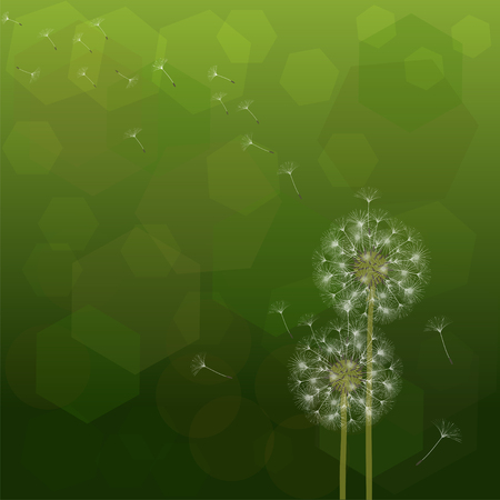 Abstract background of a dandelion for design. The wind blows the seeds of a dandelion. Template for posters, wallpapers, posters. Vector illustrations.  イラスト・ベクター素材