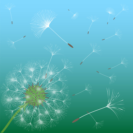 Abstract background of a dandelion for design. The wind blows the seeds of a dandelion. Template for posters, wallpapers, posters. Vector illustrations. Иллюстрация