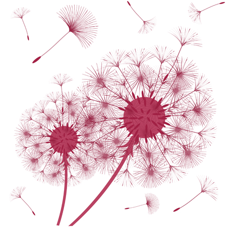 Abstract background of a dandelion for design. The wind blows the seeds of a dandelion. Template for posters, wallpapers, posters. Vector illustrations. Ilustração