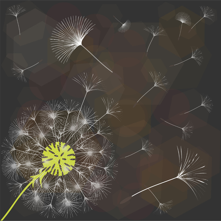 Abstract background of a dandelion for design. The wind blows the seeds of a dandelion. Template for posters, wallpapers, posters. Vector illustrations. 矢量图像