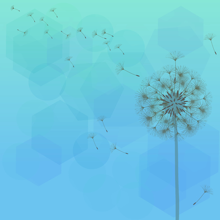 Dandelion for design. Abstract background . The wind blows the seeds of a dandelion. Template for posters, wallpapers, posters. Vector illustrations.