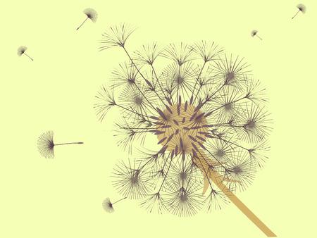 Sfondo di dente di leone per il tuo design. Il vento soffia semi di tarassaco. Modello per poster, sfondi, carte. Illustrazione vettoriale.