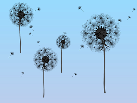 Dandelion background for your design. The wind blows dandelion seeds. Template for posters, wallpapers, cards. Vector illustration.