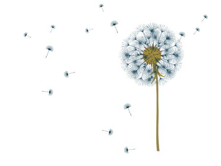 Dandelion background for your design. The wind blows dandelion seeds. Template for posters, wallpapers, cards. Vector illustration. Vektorové ilustrace