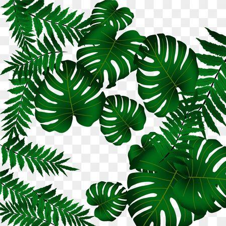 Motif tropical de vecteur, feuillage tropical lumineux, feuilles de monstera. Conception d'impression d'été lumineuse et moderne à partir de bosquets de feuilles tropicales de la jungle.