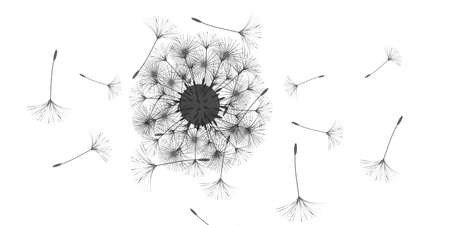 Dandelion background for your design. The wind blows dandelion seeds. Natural background. Advertising flyer brochure. Vector template. Illusztráció