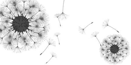 Dandelion background for your design. The wind blows dandelion seeds. Floral background. Brochure creative design. Vector template. Illusztráció