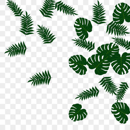 Vector tropical pattern from colorful foliage. Festive decoration. Beautiful spring garden. Summer garden. Summer tropical leaf. Natural spring style.