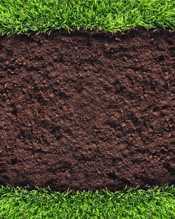 Healthy grass and soil background photo