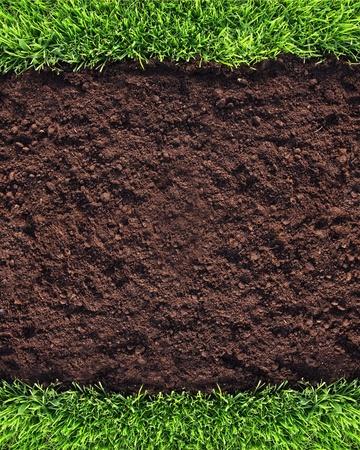 soil: Sfondo di erba e suolo sano