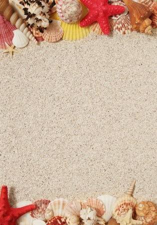 Summer concept - sand and seashells frame  photo