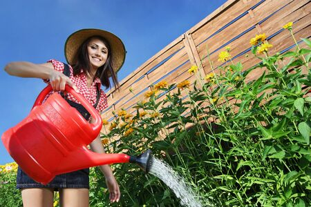 irrigate: Young attractive woman is watering plants