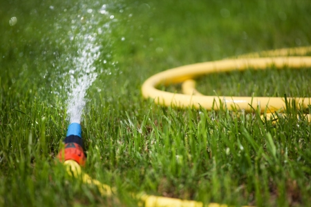 the well groomed: Garden water hose on a well groomed freshly cut grass