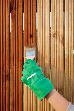 Applying protective varnish on a patio wooden fence  Stock Photo