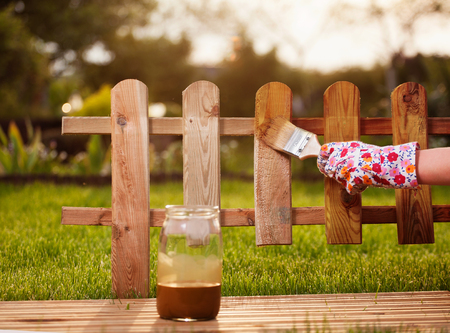 treated board: Applying protective varnish to a wooden fence  Stock Photo